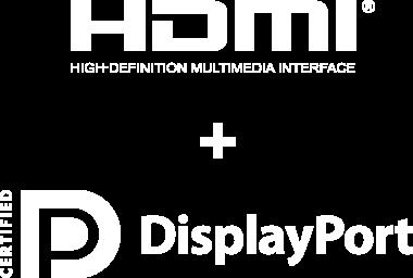 HDMI + DisplayPort