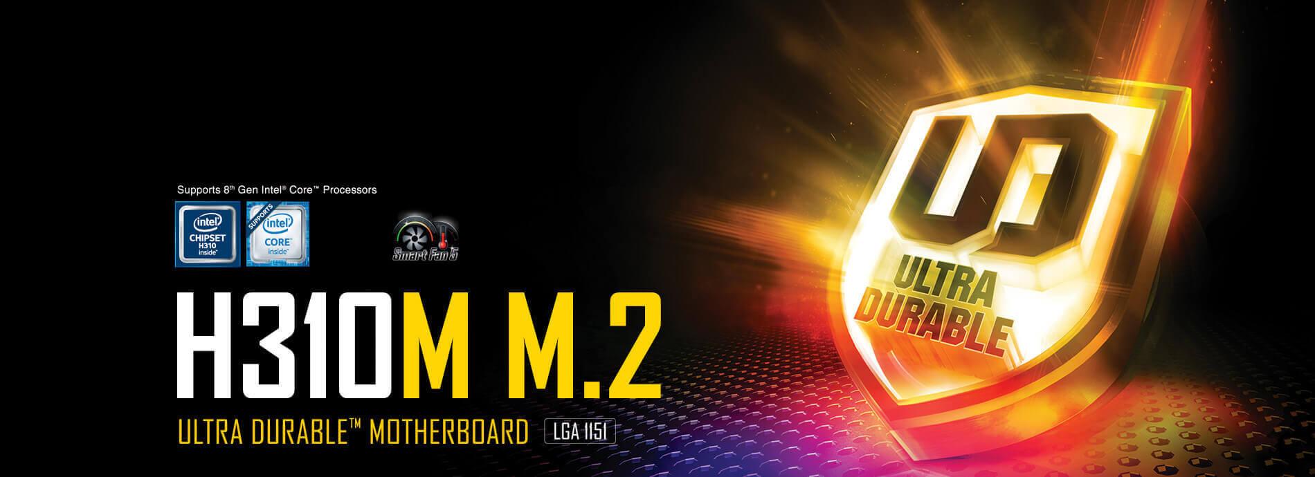 H310M M 2